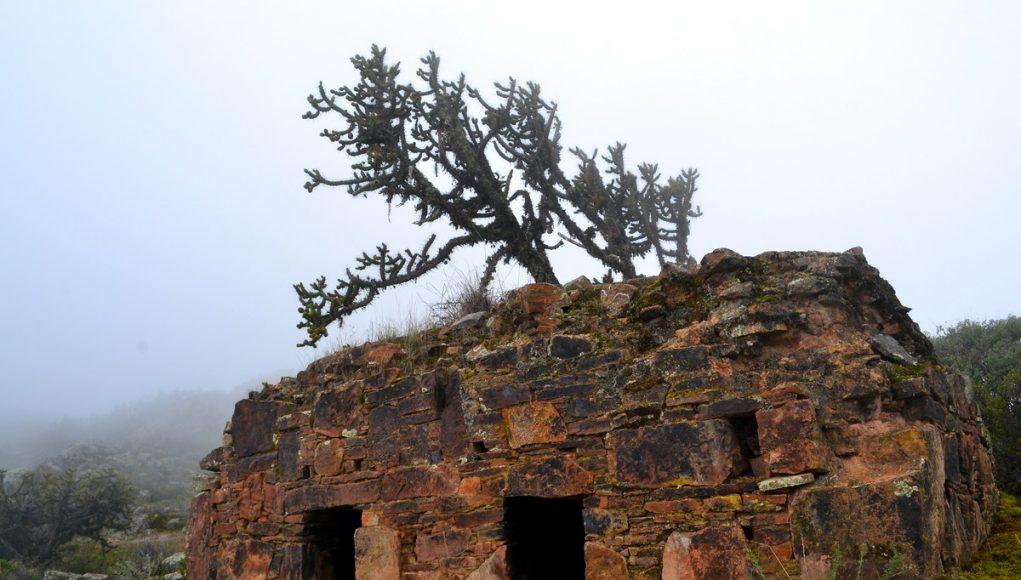 Restos Arqueológicos de Quillayoc