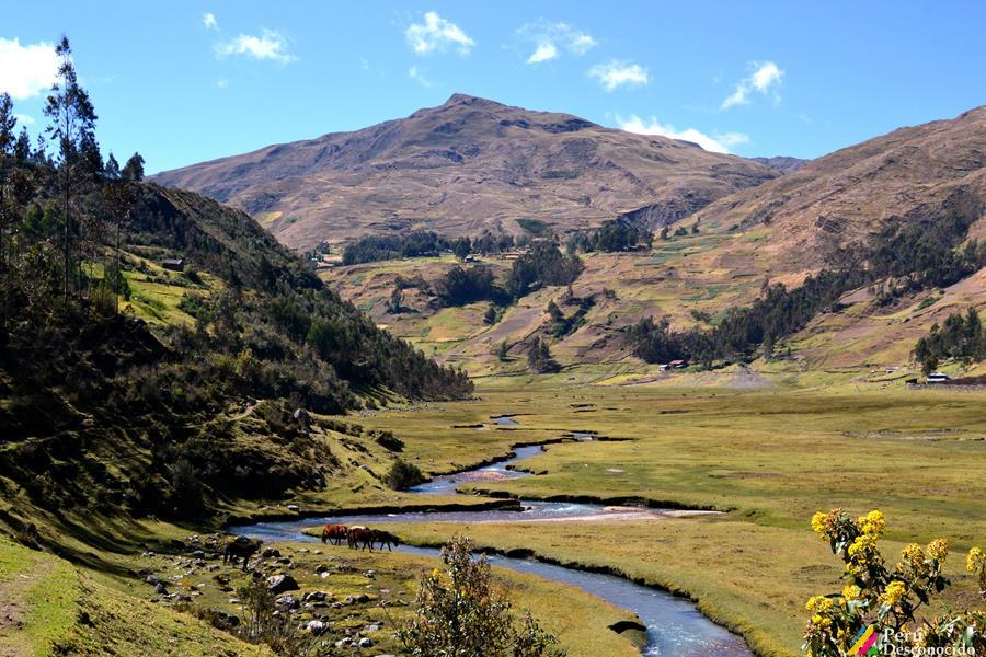 Jancapampa- Pomabamba